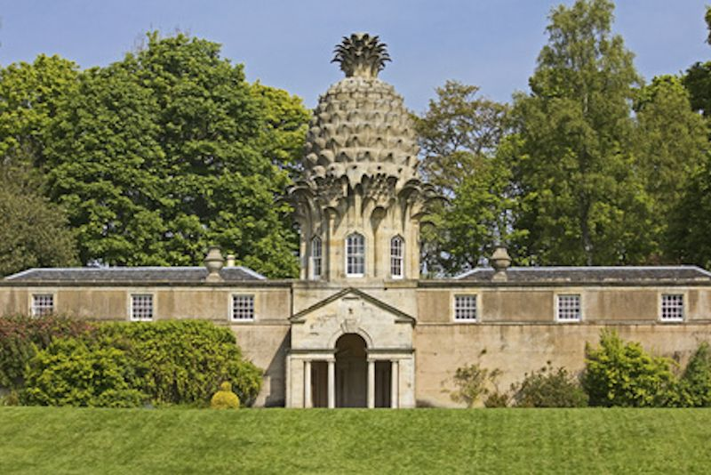 The Pineapple folly